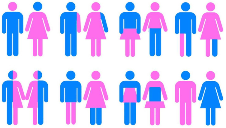 Combate à Ideologia de Género – TEM/CDS