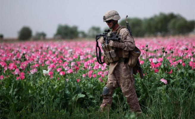 Produção de Ópio Afegão Aumentou 40X Desde a Invasão EUA-NATO