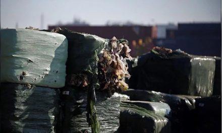 """Portugal, o """"Caixote do Lixo da Europa""""? Habitantes do Sobrado Manifestam-se Contra Aterro Sanitário"""